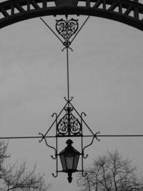 Stillleben, Fotografie, Licht