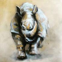Afrika, Nashorn, Big5, Tiere