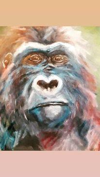Gorilla, Tiere, Affe, Blick