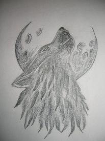 Zeichnung, Wolf, Mond, Zeichnungen