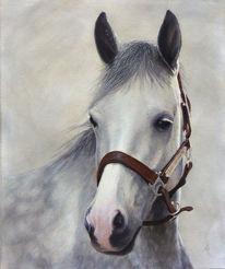 Realismus, Traum, Gemälde, Pferde