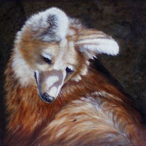 Wolf, Wildlife, Realistisch, Realismus