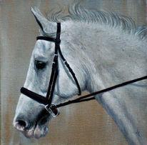 Traum, Realismus, Pferde, Miniatur