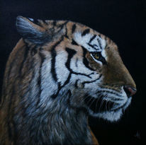 Realismus, Augen, Tiger, Gemälde