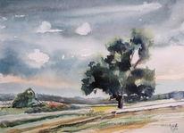 Kreut, Baum, Eichen, Landschaft