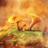 Rot, Orange, Herbst, Pilze