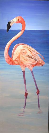 Wasser, Vogel, Flamingo, Meer