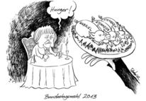 Karikatur, Steinmeier, Cartoon, Steinbrück