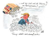Karikatur, Cartoon, Wahl, Politik