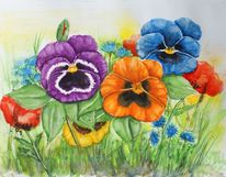 Aquarellmalerei, Bunt, Blüte, Stiefmütterchen