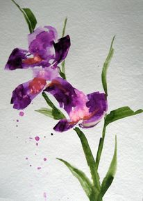 Aquarell, Iris