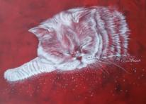 Perser, Katze, Tiere, Malerei