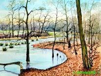 Wasserlandschaft, Nimbschen, Biber, Grimma