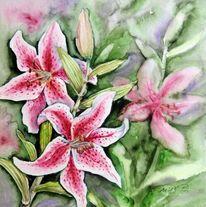 Blumen, Aquarellmalerei, Lilie, Aquarell