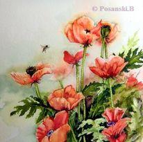 Mohn, Mohnblumen, Blumen, Aquarell
