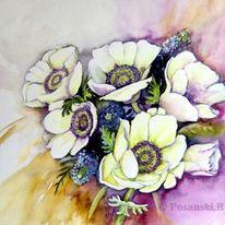 Blüte, Blumen, Anemonen, Aquarell