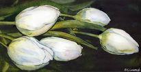 Tulpen, Aquarell