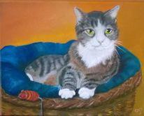 Katze, Korb, Tiermalerei, Tierportrait