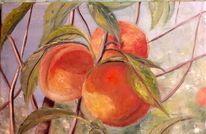 Früchte, Sommer, Obst, Himmel