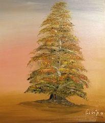 Herbst, Bunt, Himmel, Baum