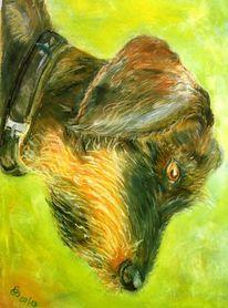Dackel, Tiermalerei, Hundeprtrait, Tiere