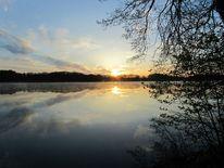 Wasser, Baum, Sonnenaufgang, Spiegelung
