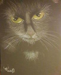 Katze, 2017, Pastellmalerei, Tiere
