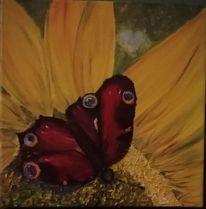 Sommer, Blumen, Schmetterling, Insekten