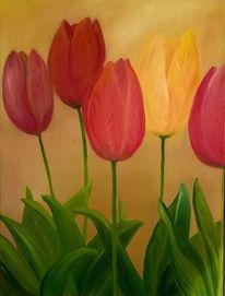 Zwiebeln, Mai, Blumen, Garten