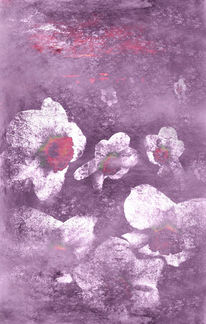 Pink, Surreal, Narcissuses, Blumen