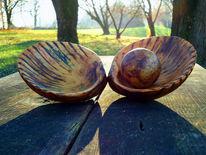 Holz, Objekt, Muschel, Saturated