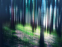 Wald, Massenhausen, Strahlung, Surreal