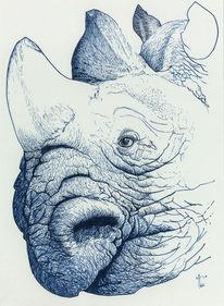 Nashorn, Tusche, Blau, Zeichnungen