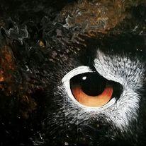 Augen, Nacht, Tiere, Jagd