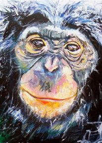 Affe, Ausdruck, Schimpanse, Tiere