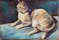 Katze, Tierportrait, Pastellmalerei, Malerei