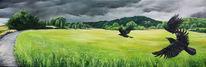 Krähe, Landschaft, Sturm, Rabe