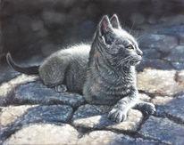 Katze, Sphinx, Kopfsteinpflaster, Malerei