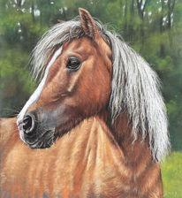 Pferde, Pony, Wald, Malerei