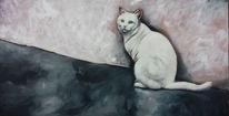 Mauer, Weiß, Wand, Katze