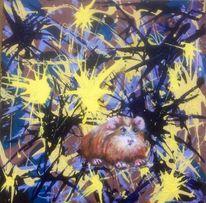 Meerschweinchen, Malerei, Satt