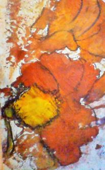 Gelb, Garten, Orange, Blumen