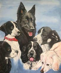 Hund, Farben, Pinsel, Augen