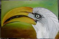 Feder, Ölmalerei, Vogel, Malerei