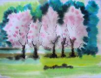 Rheinland, Kirsche, Aquarellmalerei, Baumblüte