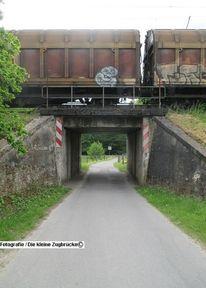 Fotografie, Brücke, Zug, Linde