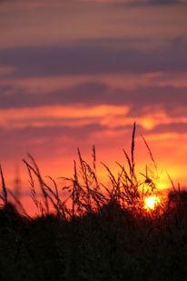 Fotografie, Wolkenschön, Sonne, Rot