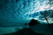 Straße, Wolken, Zweig, Winter
