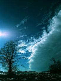 Kalt, Pflanzen, Feld, Wolken