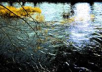 Wasser, Sonne, Welle, Strömung